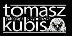 Tomasz Kubiś